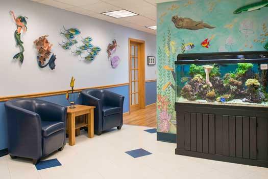 East Providence Office Aquarium Thumbnail